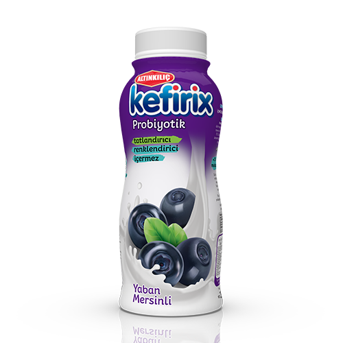 Kefirix Blueberry 250 ml
